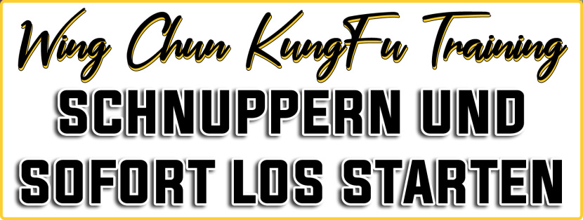 Sifu Chrisu | WingChun Meister | Schnuppern in Wien23