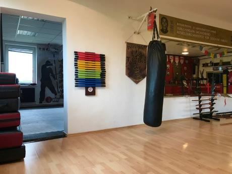 Lernen Sie Kungfu in der Akademie Wien23